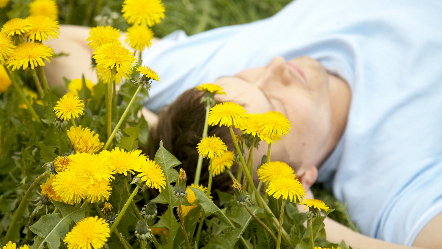 Man laying on the field with flowers